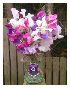 Sweet love, first bunch of heavenly scented sweet peas from the Ditsy Floral Cutting Patch #sweetpea #posyjar #homegrown