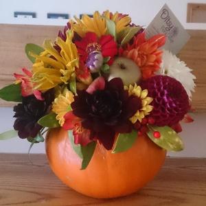 Halloween Pumpkin Flowers #locallygrown www.ditsyfloraldesign.co.uk