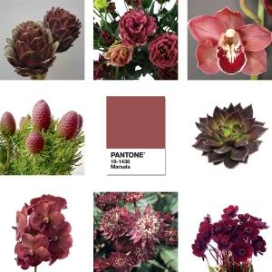 2015 Pantone Marsala Flowers